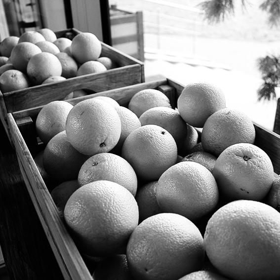 Забота об иммунитете: фруктовые пятницы и десертные среды